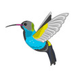 humming bird icon vector image vector image