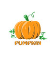 logo icon design pumpkin farm vector image
