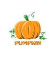 logo icon design pumpkin farm vector image vector image