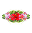 tropical flowers beautiful isolated composition vector image vector image