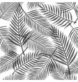 black and white tropical leaves background vector image