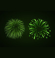 beautiful bright fireworks set isolated on black vector image vector image