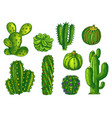 cactus and succulents agave sketch plants vector image vector image