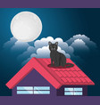 cat under the light of the moon in the roof vector image