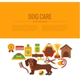 Dachshund care infographic concept vector image