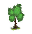 isometric cartoon bushy green tree - tileset map vector image vector image