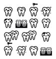 Kawaii Tooth cute teeth characters - black vector image vector image
