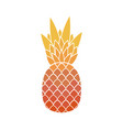 pineapple with leaf tropical exotic fruit vector image vector image