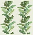 rainforest decorative wallpaper ornament vector image vector image