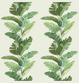 rainforest decorative wallpaper ornament with vector image vector image