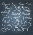 set hand drawn eco food sketches on chalkboard vector image