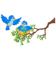 Birds with her two babies in the nest vector image vector image