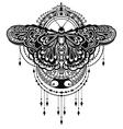 Butterflies design vector image vector image