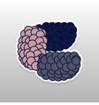 Flat sticker berry vector image vector image