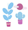 set house plants ficus cactus sun vector image
