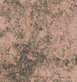 Abstract texture of brown like wall vector image vector image