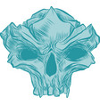skull collection hand vector image