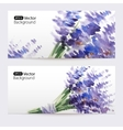 Two floral watercolor banners with lavender vector image vector image