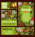 vegetables veggie farm food sketch posters vector image vector image