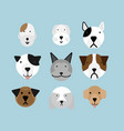 set of dogs flat style vector image