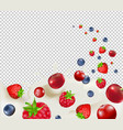 berry borders with transparent background vector image vector image