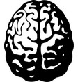 black and white human brain in top view vector image vector image