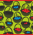 Black baskets with summer berries on the green vector image