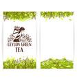 Green tea banner template vector image vector image