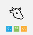 of animal symbol on cattle vector image