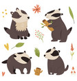 set cute forest badger characters design vector image vector image