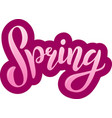 the inscription spring modern brush calligraphy vector image