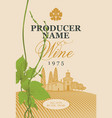 wine label with the landscape and green grapevine vector image vector image