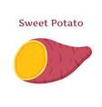 brown batat sweet potatoorganic health vegetable vector image