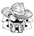 bulldog head hat poker ace vector image vector image