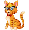 cute fashion hipster cat with bow tie and glasses vector image vector image