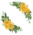 floral bouquet design set of tender yellow lily vector image