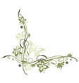 Flowers olive vector image vector image