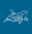 hand drawn patterned killer whale vector image vector image