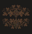 vintage a grape branch vector image