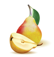 Big realistic ripe yellow pear with green leaves vector image