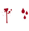 blood drops on white background vector image vector image