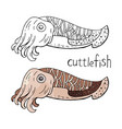 cuttlefish black and white and color isolated on vector image