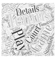 Detailing Before the Play Word Cloud Concept vector image vector image