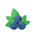 fresh juicy blueberry icon tasty ripe fruit vector image