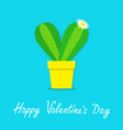 happy valentines day cactus heart icon in the pot vector image vector image