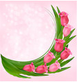 holiday background with bouquet pink flowers vector image vector image