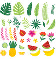 set of isolated with tropical plants and fruits vector image vector image