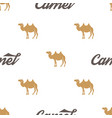 camel pattern seamless background vector image