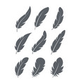 feathers icons set vector image vector image