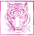head of tiger is in a watercolor artwork in pink vector image vector image